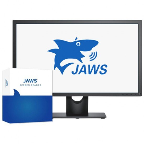JAWS Screen Reading Software Professional Edition